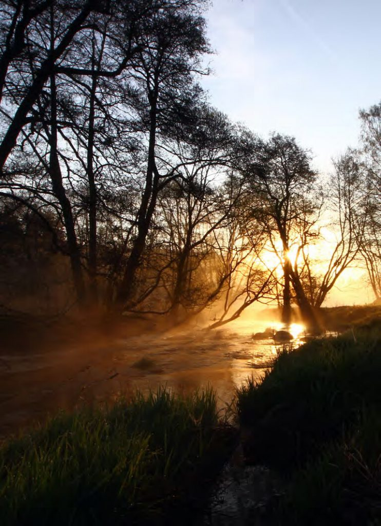 Von der Quelle bis zur Mündung: Die Eger