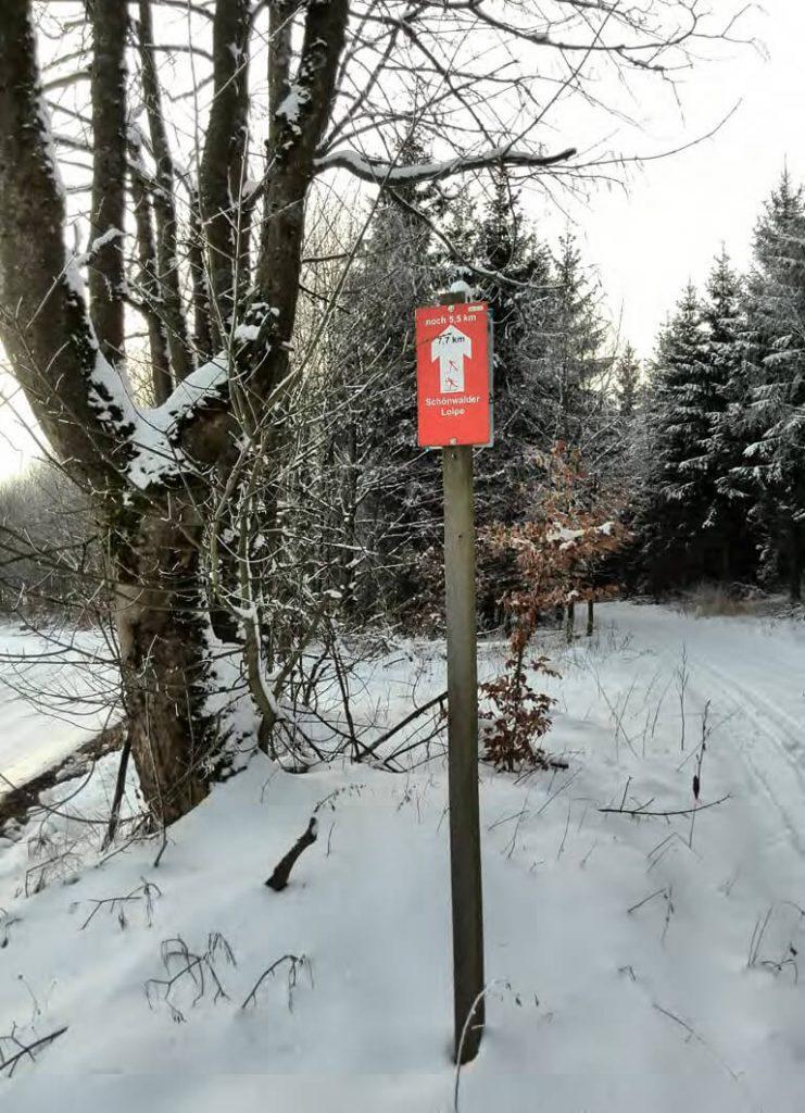 Entspannt Skaten: Langlaufen in Hochfranken