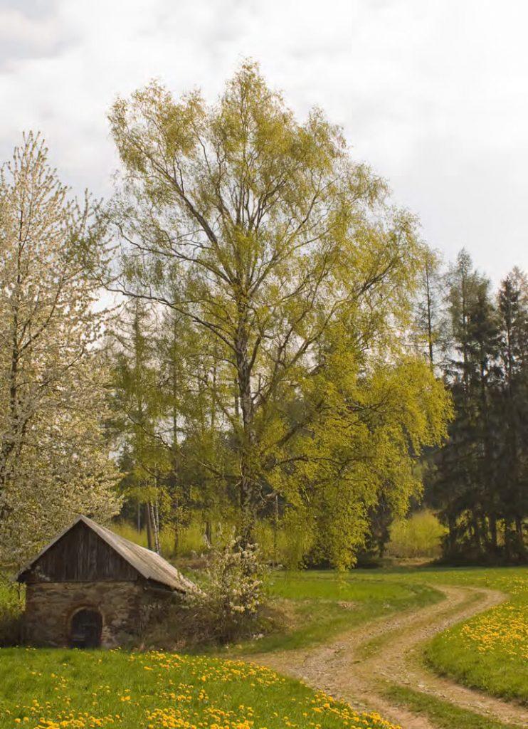 Frankenwald, Flussnähe, Ferien: Das Selbitztal